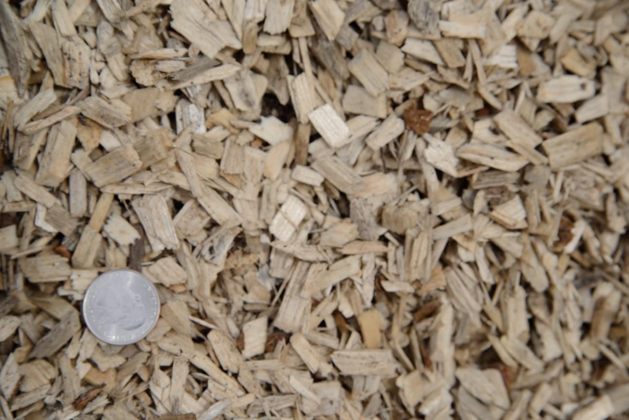 Playground Chips